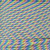Prism - 550 Paracord