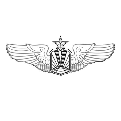 AF192U - RPA Pilot - Senior