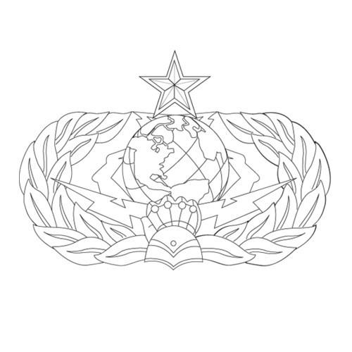 AF195U - Cyber Space Support - Senior