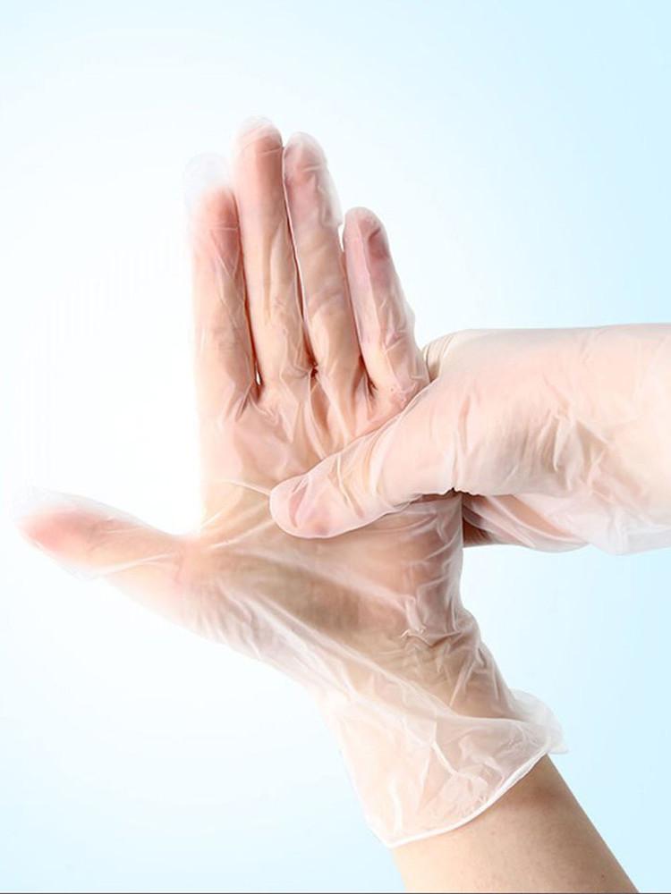 Disposable Vinyl Gloves (5-pair set)
