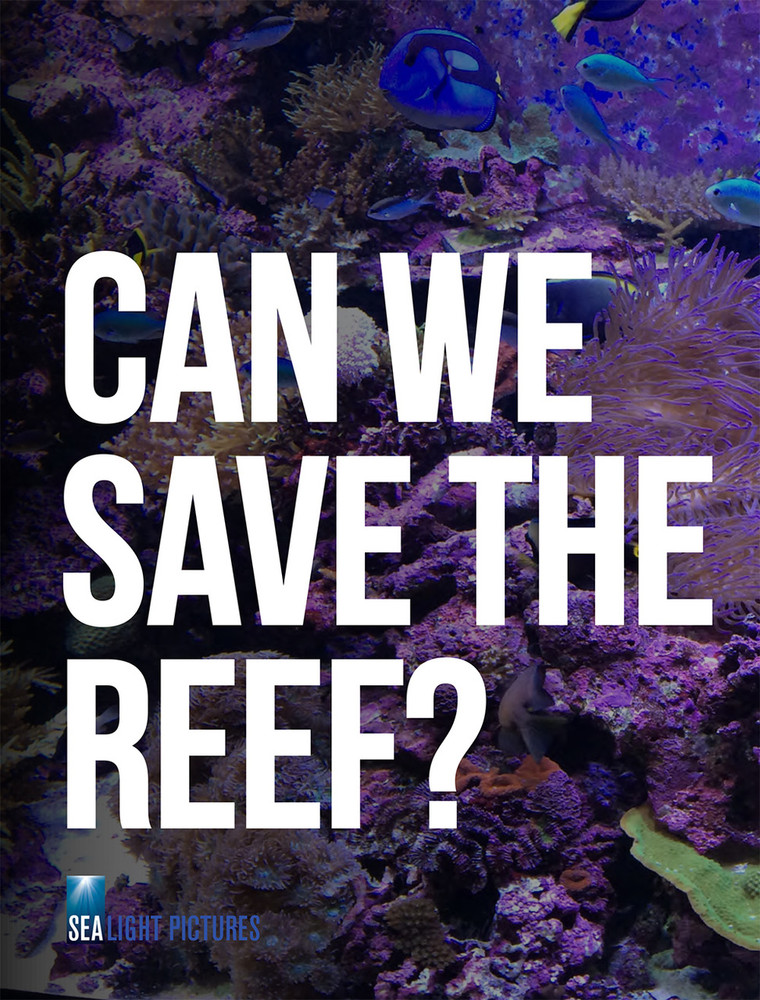 Can We Save the Reef? (1-Year Rental)