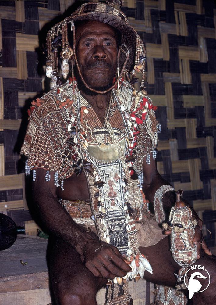 Solomon Islands: Moro - Melanesian Bigman (1-Year Access)
