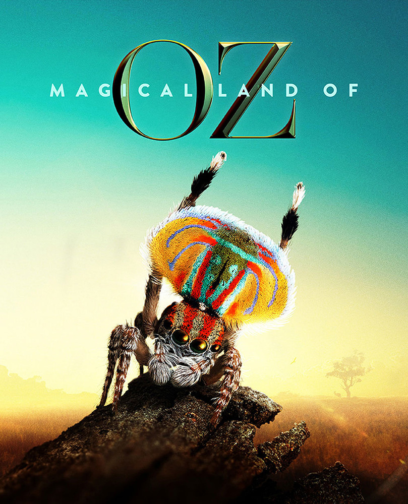Magical Land of Oz (7-Day Rental)