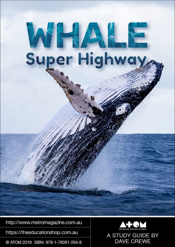 Whale Super Highway (ATOM Study Guide)