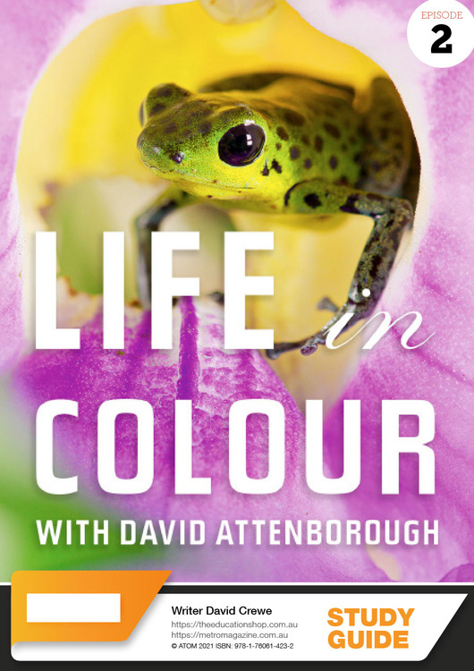 Life in Colour - Episode 2 (ATOM Study Guide)