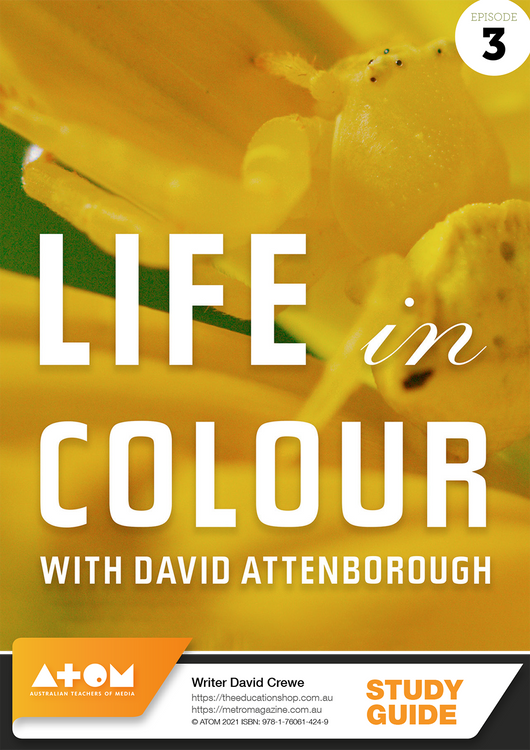 Life in Colour - Episode 3 (ATOM Study Guide)