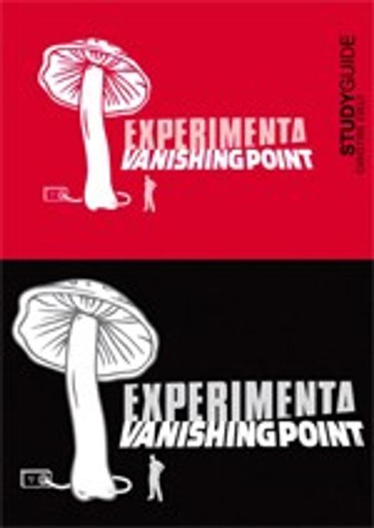 Experimenta: Vanishing Point
