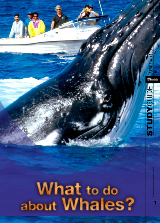 What to Do About Whales? (ATOM Study Guide)
