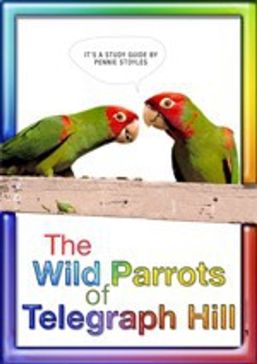 Wild Parrots of Telegraph Hill, The