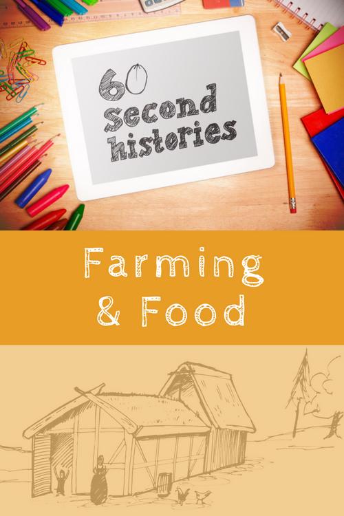 Vikings - Farming & Food (1-Year Rental)