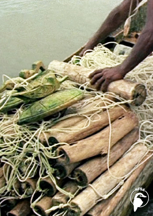 Solomon Islands: Volo Momoru - The Turtle Net (3-Day Rental)