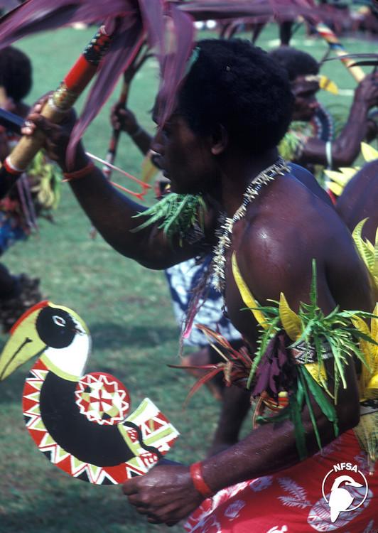 Solomon Islands: Wogasia (1-Year Access)