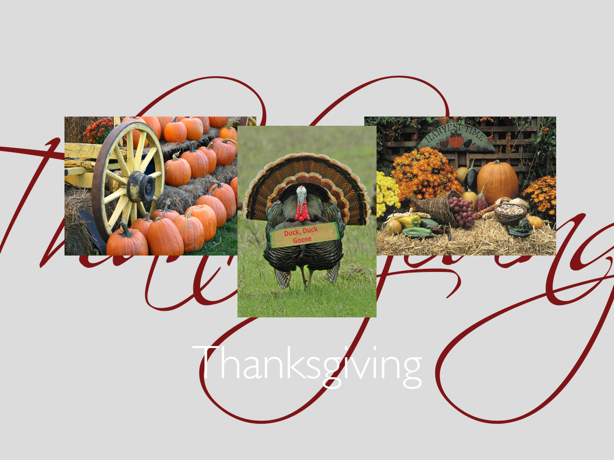Thanksgiving banner featuring best-selling Thanksgiving cards