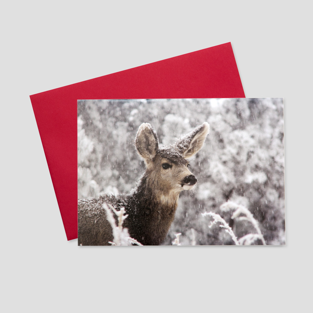 Company Holiday greeting card with a peaceful deer amidst the trees of a barren, snowy forest
