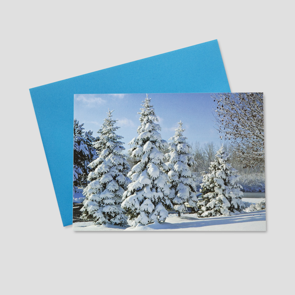 Holiday Business greeting card featuring a vast snowy scene with grand fir trees covered in a fresh winter's snow