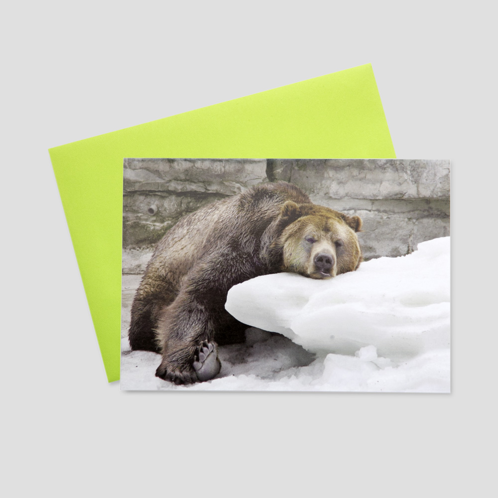 Humorous keep in touch greeting card featuring a bear resting his head on a large rock after a long day basking in the sun