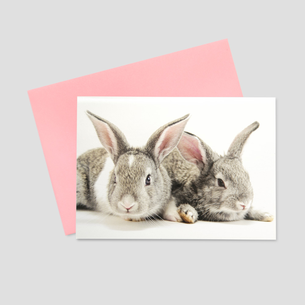 Corporate keep in touch greeting card featuring two small brown bunnies sitting next to each other amidst a blank white background
