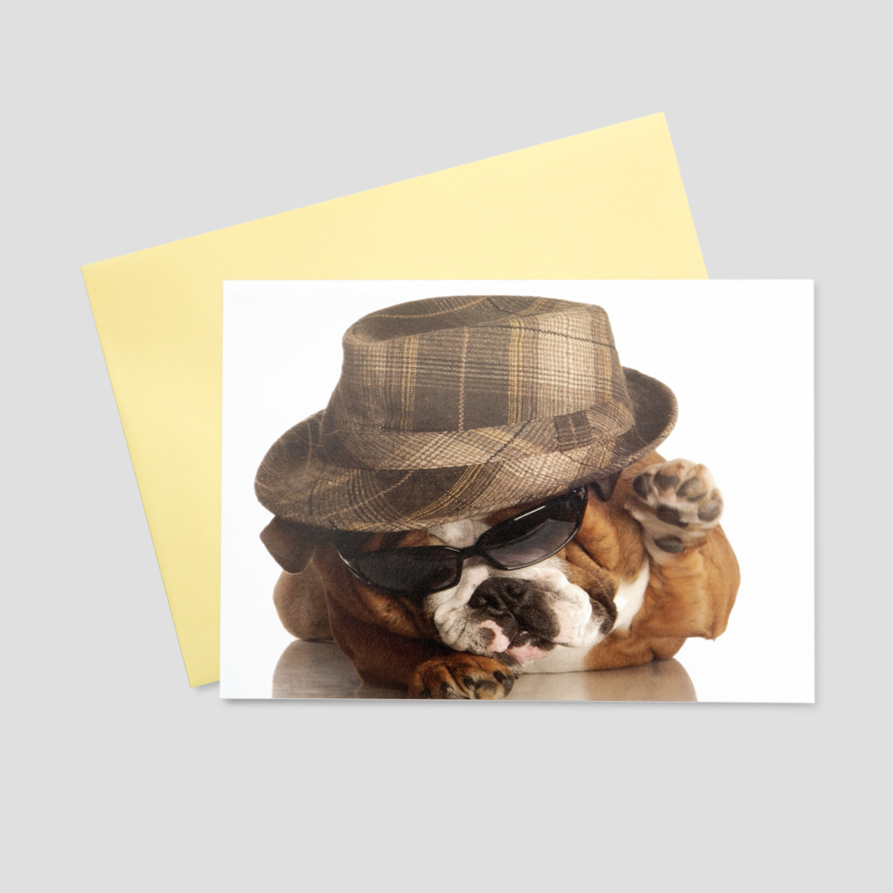 Funny keep in touch greeting card featuring a bulldog with a fedora hat and dark sunglasses on a white background