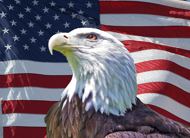 PE100 - Patriotic Eagle