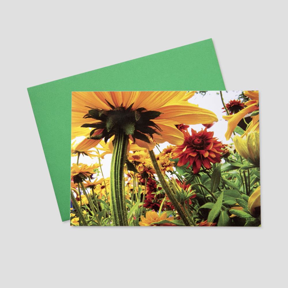 Corporate Springtime greeting card with an image of large daffodils, sunflowers, and greenery