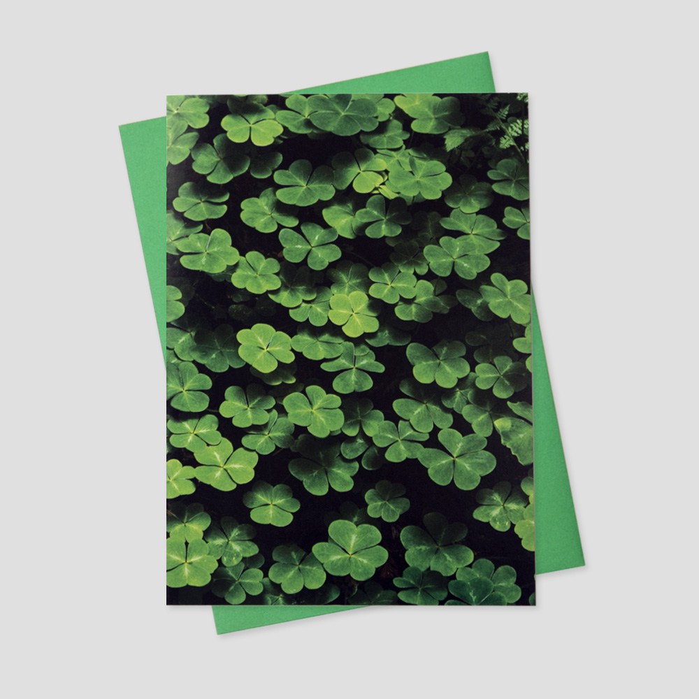 Client St. Patrick's Day greeting card feature a bed of shamrocks and four leaf clovers
