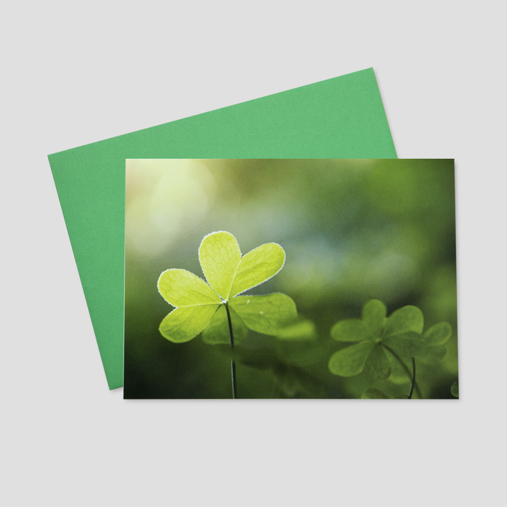Customer St. Patrick's Day greeting card with an image of two shamrocks with the sunlight shining through their leaves