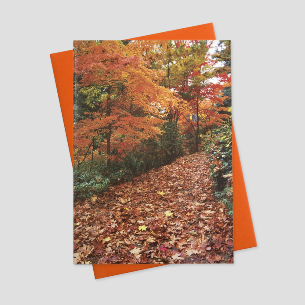 Company Thanksgiving greeting card with an image of a forest trail covered in fall leaves
