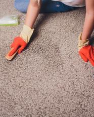 Carpet Cleaner