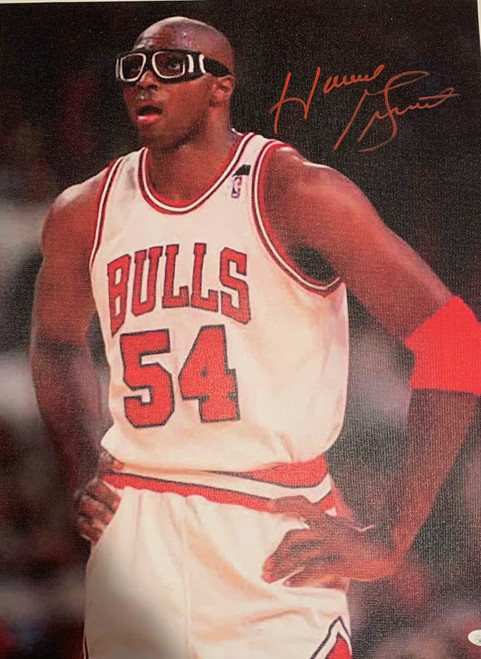 """Horace Grant Authentic Autographed Chicago Bulls 18"""" x 24"""" Canvas - JSA COA"""