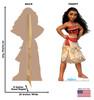 Moana for the Disney Movie Moana front and back