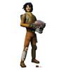 Ezra  Bridger Star Wars Rebels