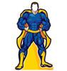 Life-size Super Hero Standin Cardboard Standup