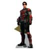 Life-size Robin - Arkham Origins Cardboard Standup |Cardboard Cutout
