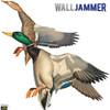 Flying Mallard Ducks WallJammer WJ1208