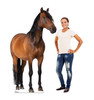 Horse 2 Cardboard Cutout 1491