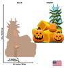 Life-size cardboard standee of Pumpkin Patch. View of back and front of standee with dimensions.