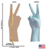Life-size cardboard standee of a Number 2 Hand with back and front dimensions.