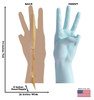 Life-size cardboard standee of a Number 3 Hand with back and front dimensions.