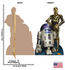 R2-D2 and C-3PO (Classics Retouched) 1806