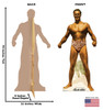 Life-size cardboard standee of Charles Atlas bodybuilder with back and front dimensions.