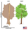 Life-size cardboard standee of a Tree Front and Back View