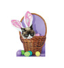 Grumpy Cat - Easter 3050
