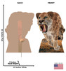 Life-size cardboard standee of the Saber Tooth Tiger with back and front dimensions.