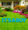It's a Boy Yard Sign Letter Set