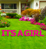 It's a Girl Yard Sign Letter Set.