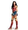 Wonder Woman 1984 cardboard standee.