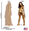 Wonder Woman 1984 Gold cardboard standee with front and back dimensions.