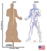 Life-size cardboard standee of Iceman from Marvels Timeless Collection with back and front dimensions.