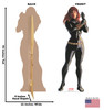 Life-size cardboard standee of Black Widow from Marvels Timeless Collection with back and front dimensions.