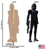 Life-size cardboard standee of Elite Squad Trooper from The Bad Batch on Disney+ with front and back dimensions.